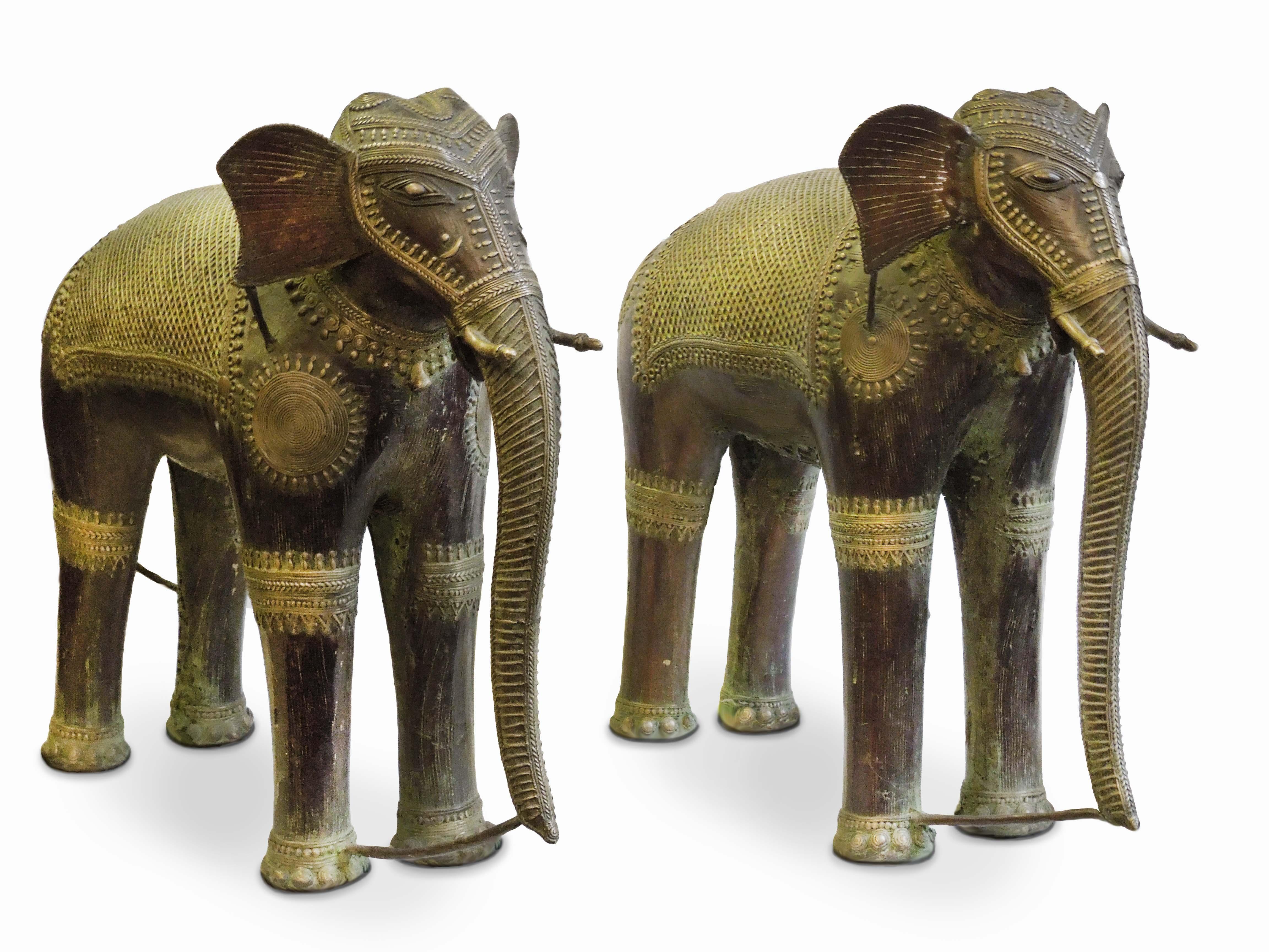 Dva indičtí sloni