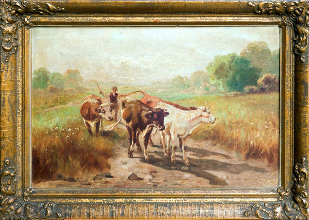 Pasák s kravami
